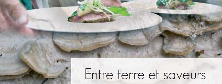 ferron-callot_livre